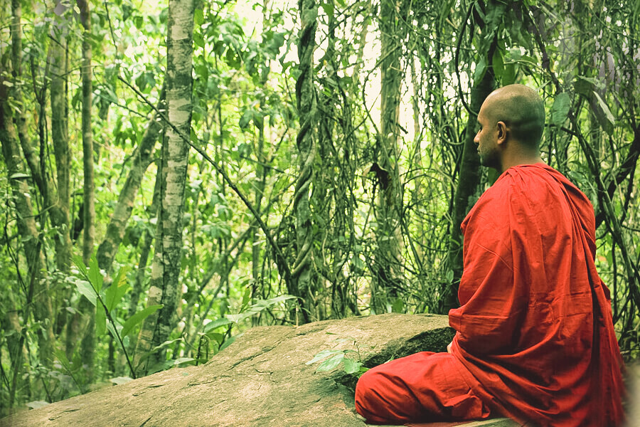 Buddhist Meditation & Pilgrimages