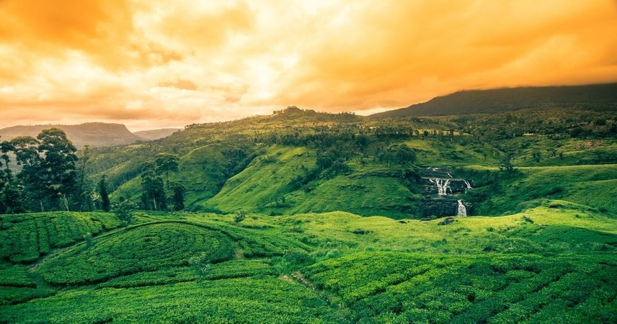 18 NOT MISS outs when Traveling to Sri Lanka