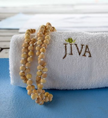 what's special at Jiva Spa