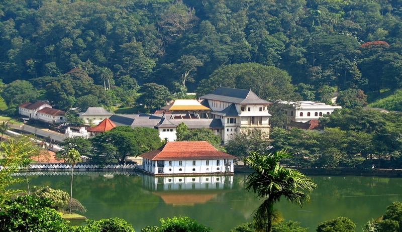 Meditation & Ayurveda Journey in Sri Lanka-